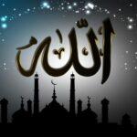 Četiri stvari koje je Allah stvorio Svojom rukom