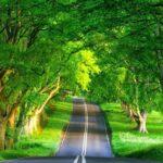Šejtanski putevi do čovječijeg srca